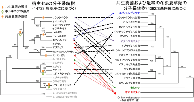 地图 电路 电路图 电子 原理图 675_355